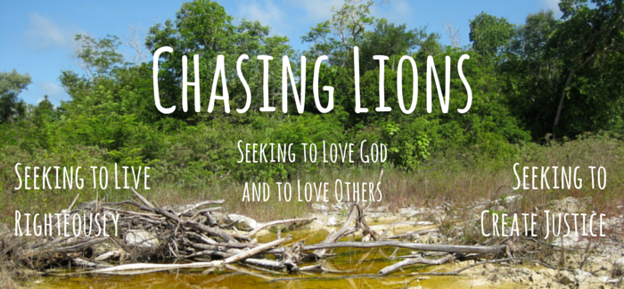 Chasing_Lions_(1)